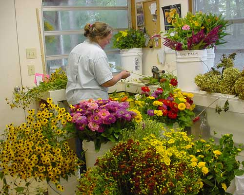 Betsy trims and bunches cut flowers