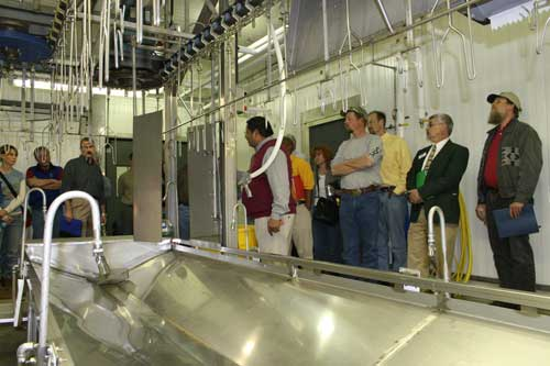 inside the plant