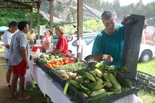 Bobby refills sweet corn at the market