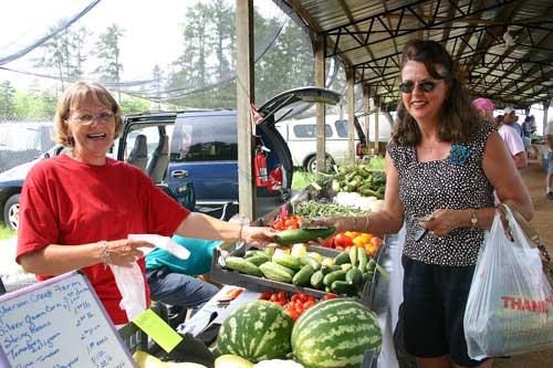 Vicki at the Pittsboro Farmers' Market