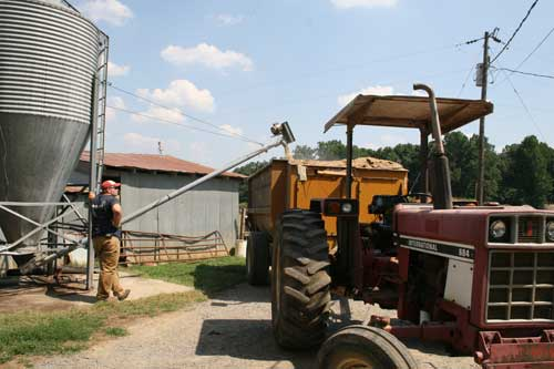 loading ground corn