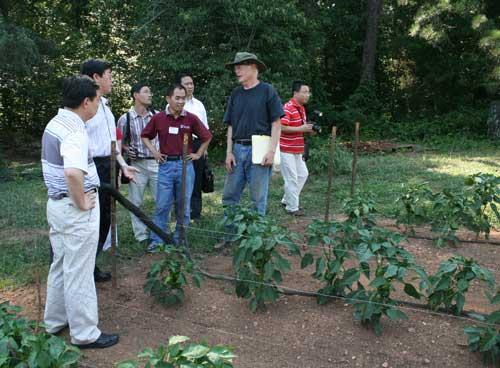 Bill discusses his pepper crop