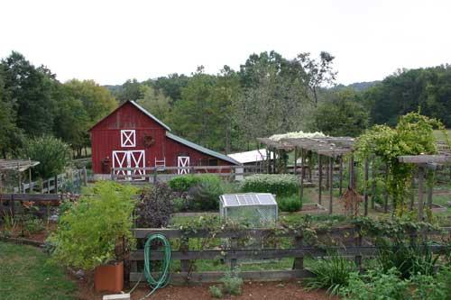 View of Bluebird Hill gardens