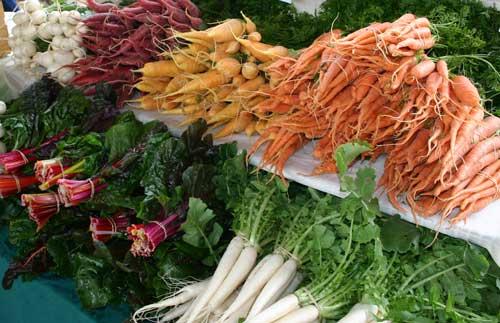radishes, carrots, turnips, and chard!
