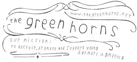 Greenhorns banner