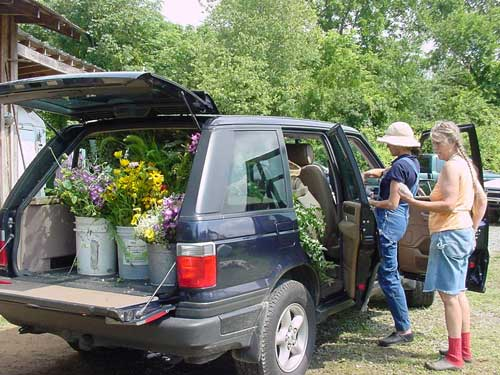 loading flowers for a wedding