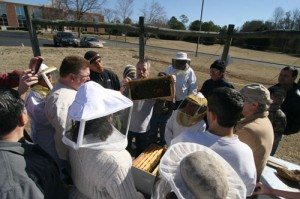 Cover photo for Register Now for 2015 Chatham County Beekeeping School