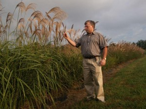 Cover photo for NCSU Biofuel Survey for Farmers