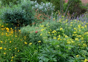Cover photo for Monthly Pollinator Garden Tours Start May 11!