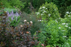 Cover photo for Pollinator Garden Tour Wednesday, May 11