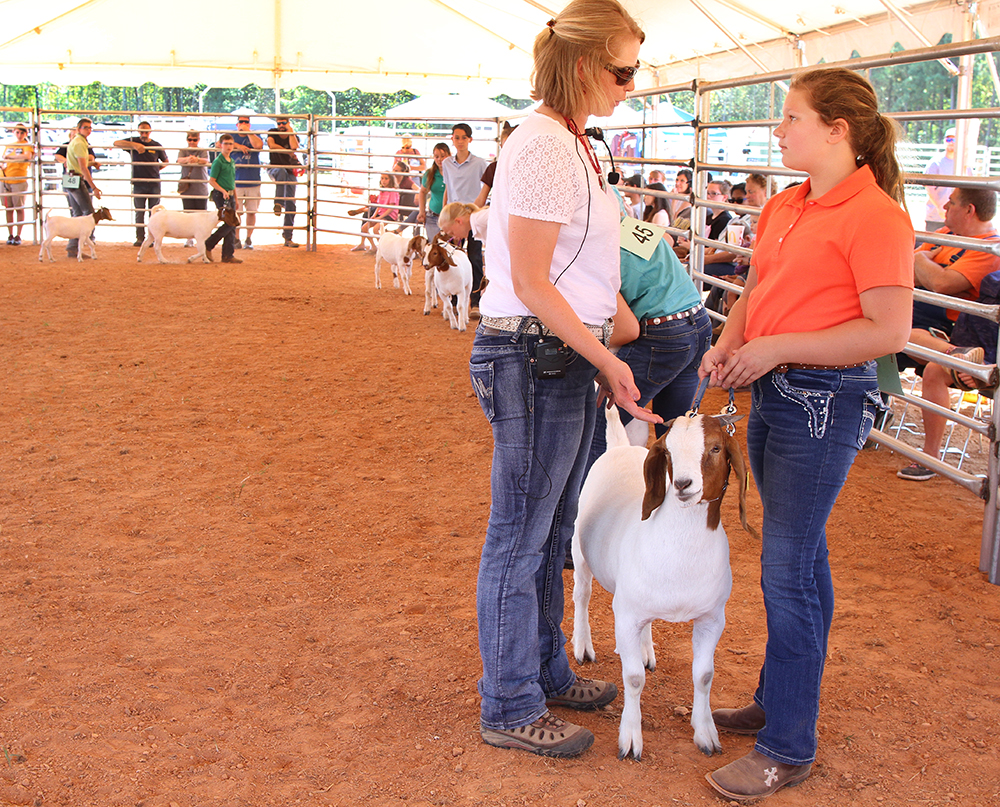 4-H leader talks with 4-H member