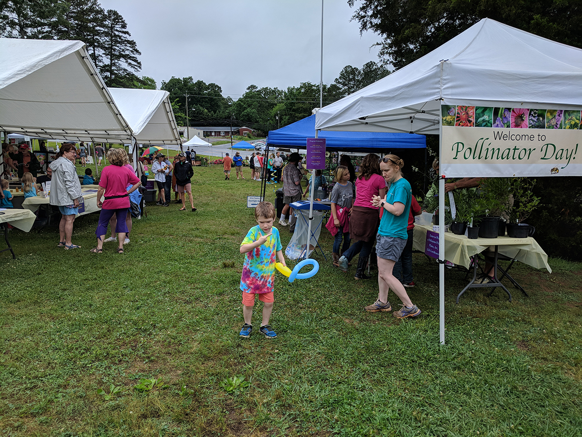 We had several tents for various activities.
