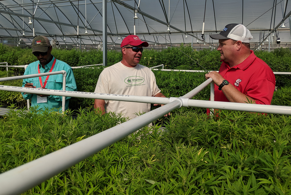 Grower Ryan Patterson (center) talks with agents about his clone production. They grow all their own clones and also sell them to other growers.