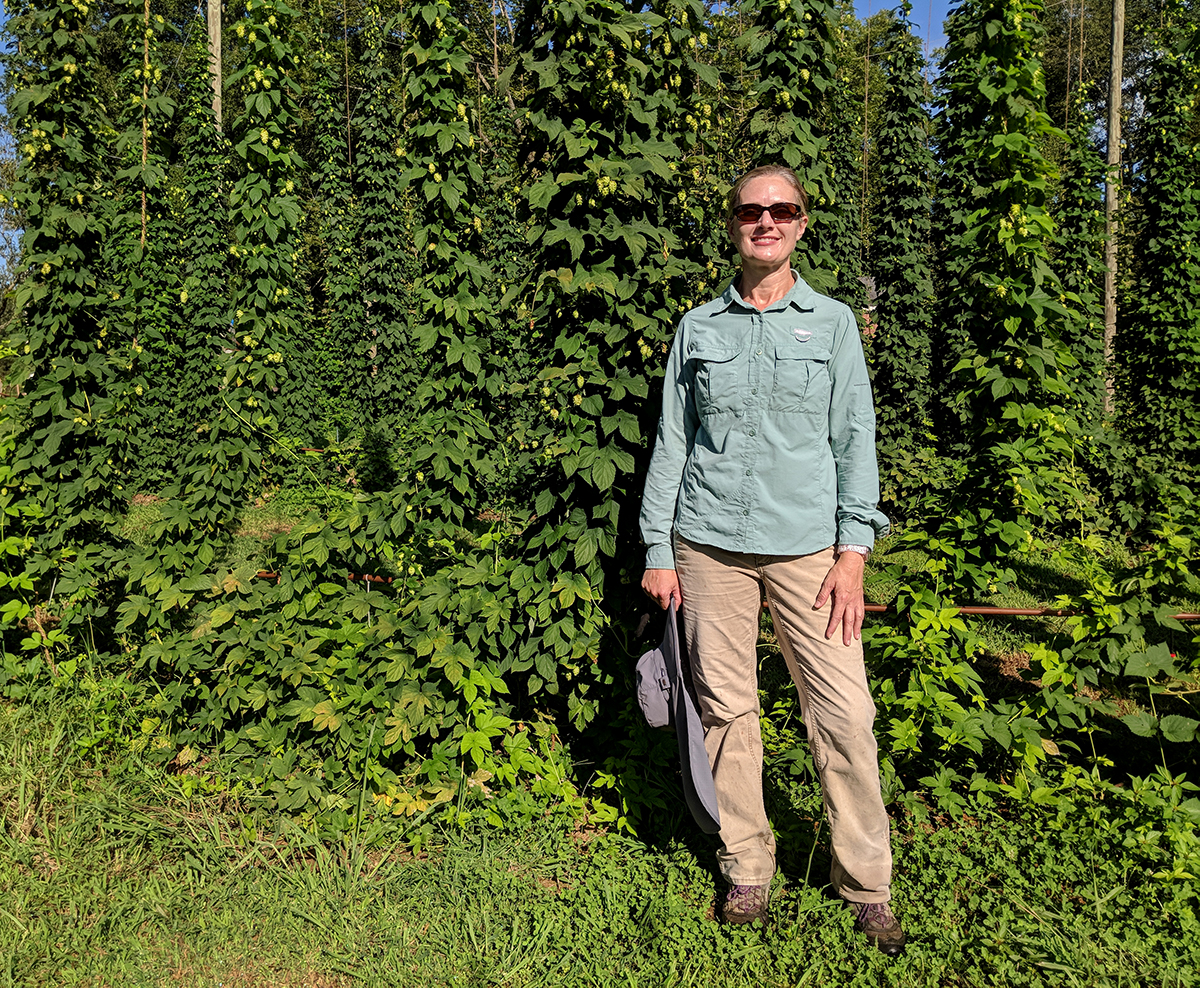 Grower Tiffany Cooper. This is her second year of growing hops.