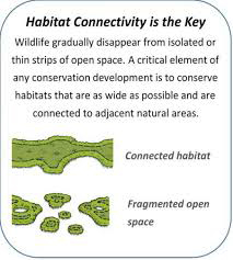 habitat connectivity graphic