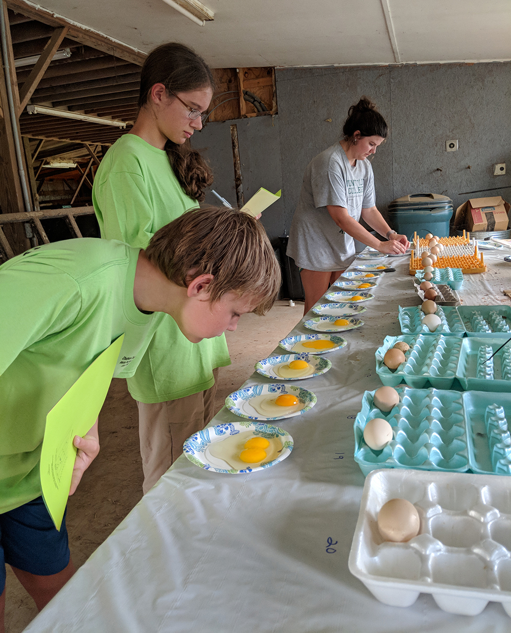 Cole and Emily evaluate the interior quality of the eggs.