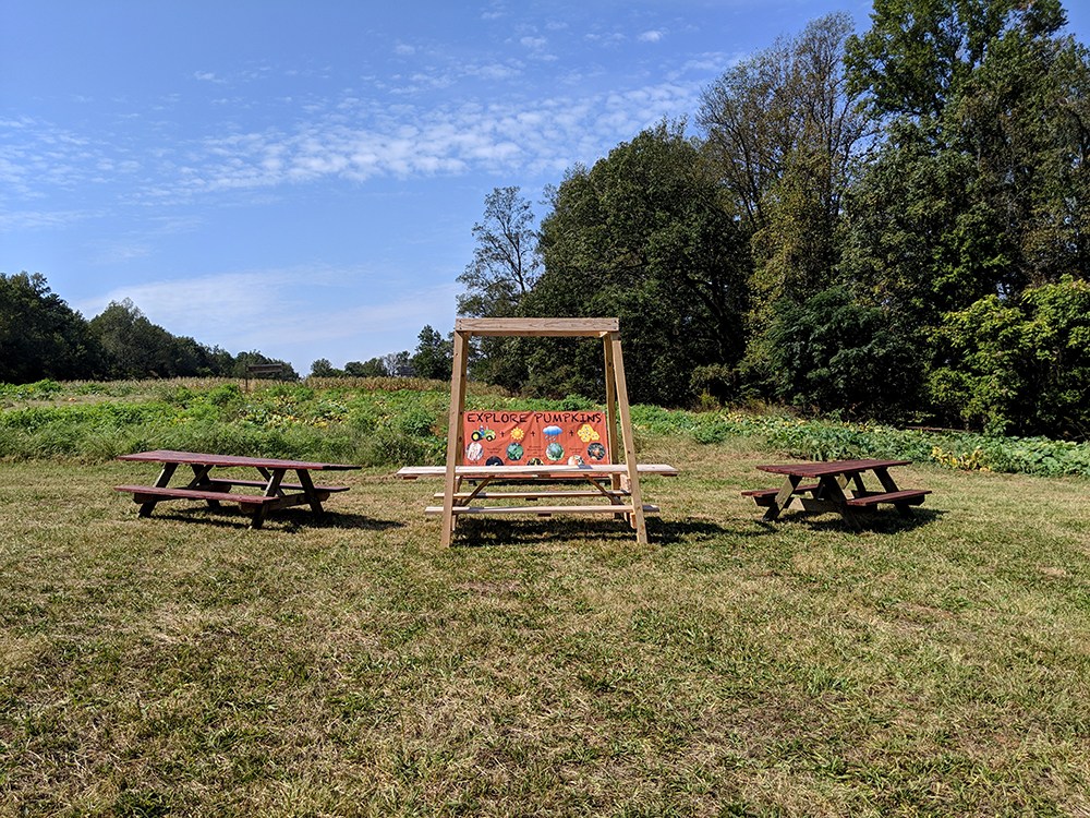 Visitors to the pumpkin patch can learn about pumpkin production and pick a pumpkin to buy.