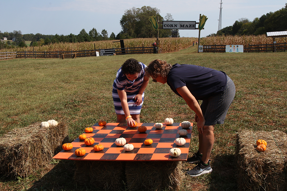 The farm has lots of games set up to keep visitors entertained.