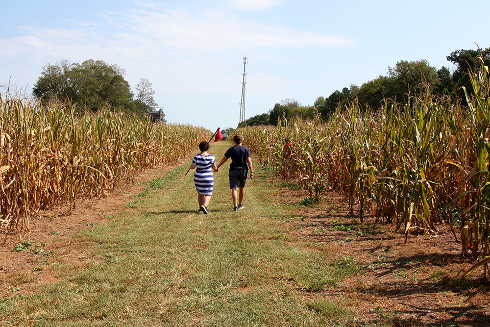Paige and her daughter Austin take off on the path to the corn maze.