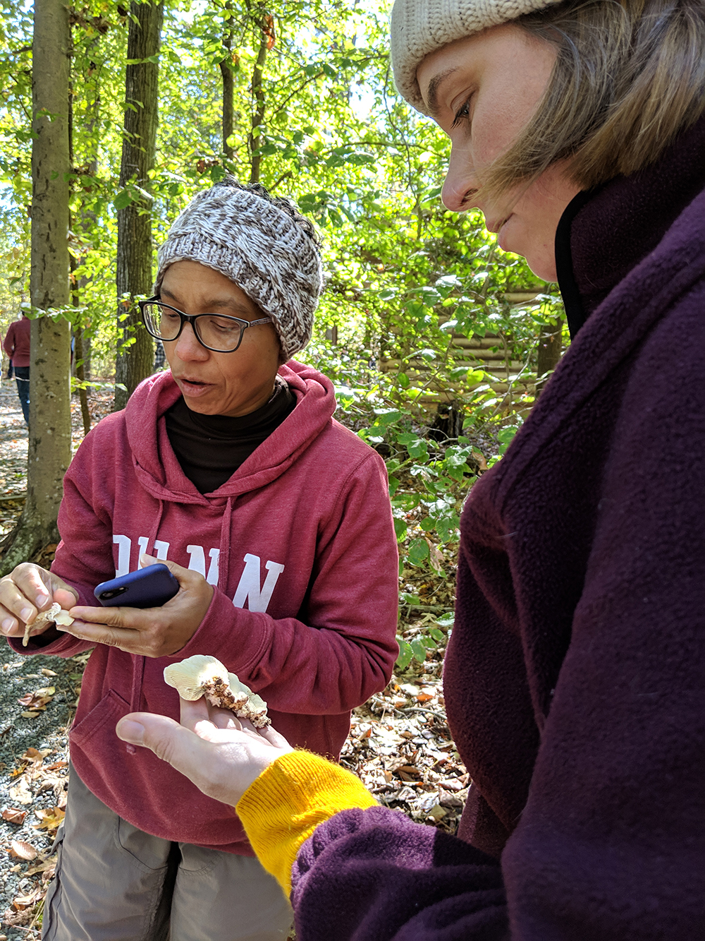 Laura Stewart helps identify mushrooms on the walk.