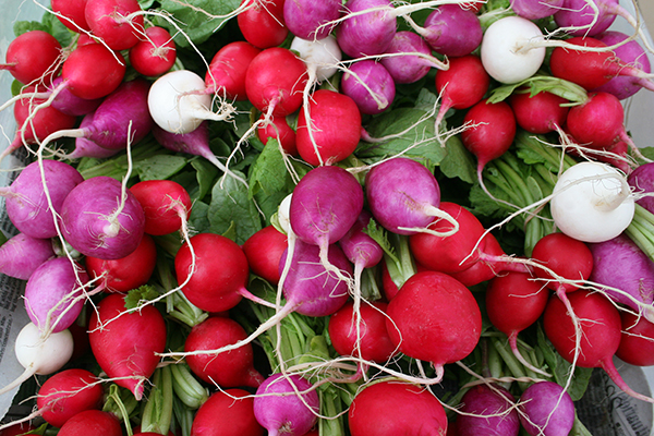 Farmers' market radishes.