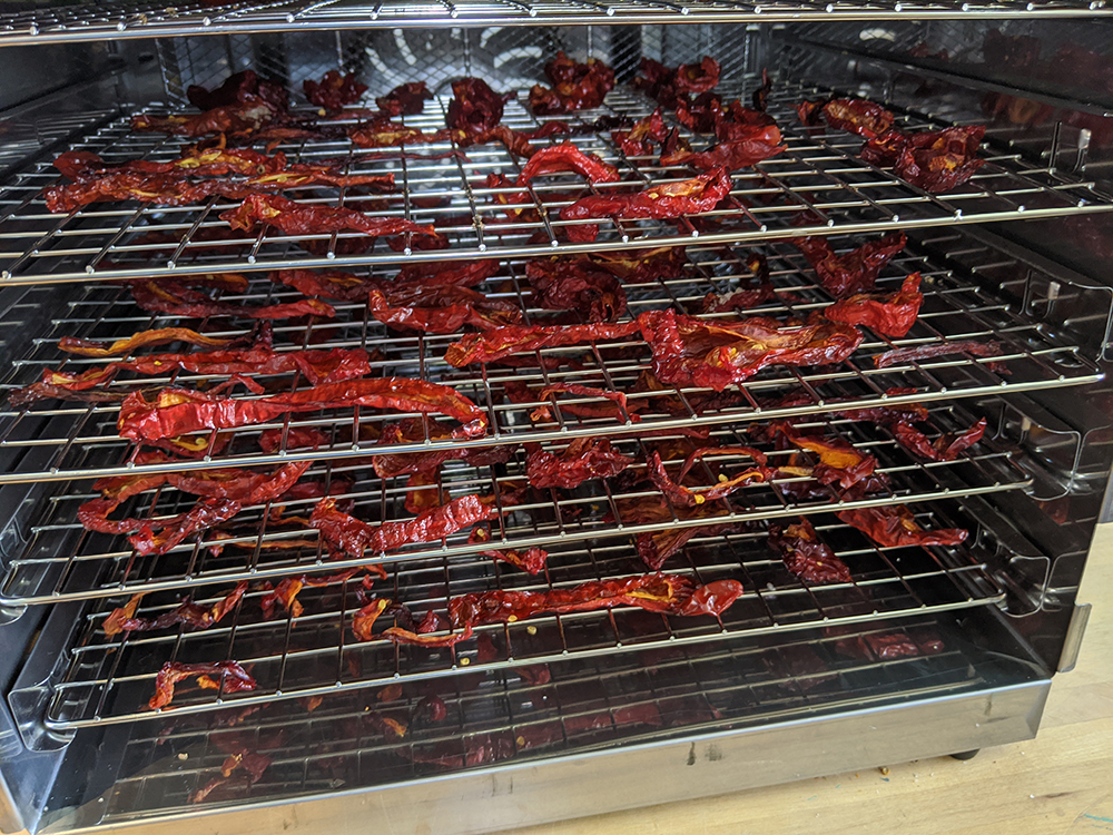 peppers on dehydrator racks