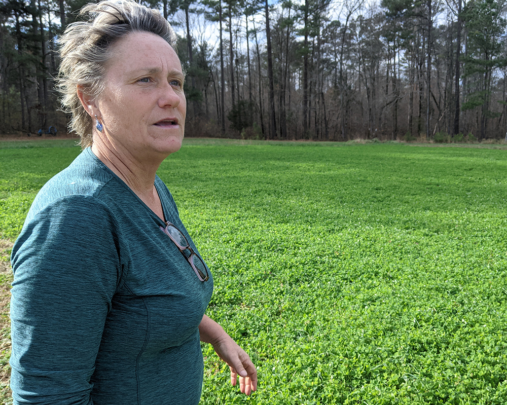 Meredith discusses her cover crop rotations