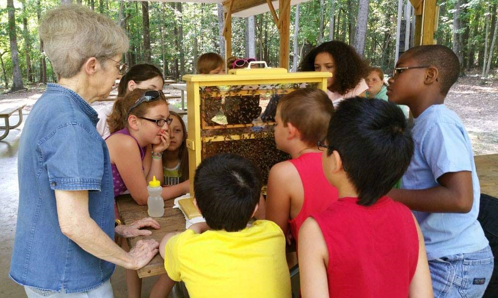Judy Pick teaching kids about honey bees and beekeeping
