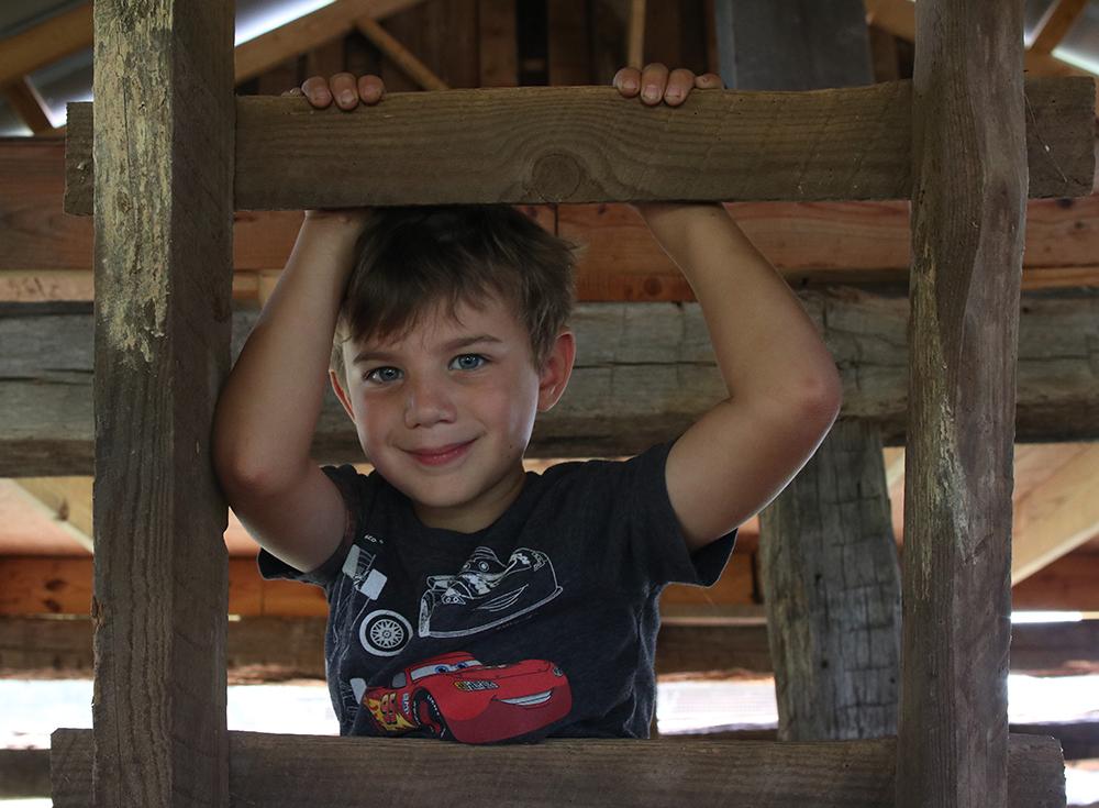 Boy on ladder